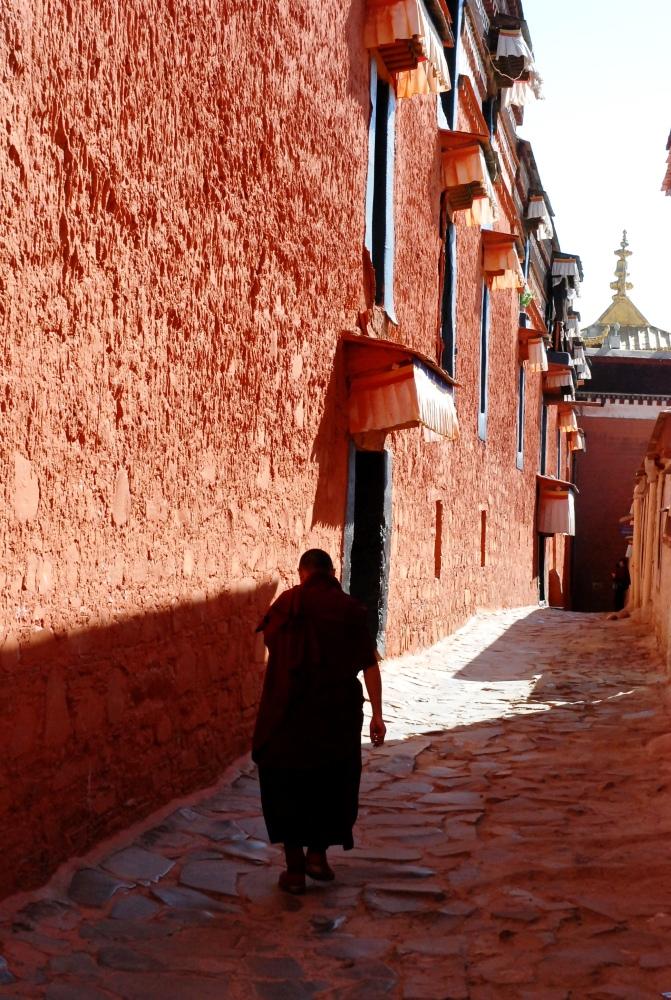 Tibet si Himalaya (6/6)